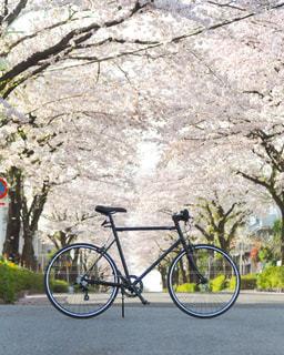 自転車は、道路の脇に駐車の写真・画像素材[823169]