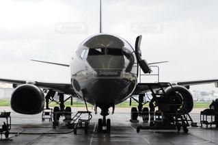 飛行機の写真・画像素材[1256512]