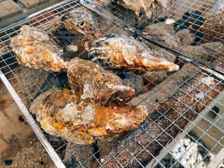 牡蠣の写真・画像素材[3019733]