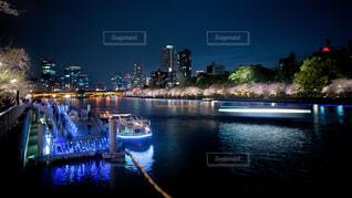大阪・天満橋の夜桜の写真・画像素材[3024755]