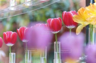 テーブルの上に花の花瓶の写真・画像素材[3032243]