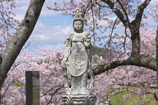 木の前に立つ像の写真・画像素材[3089759]