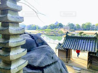 岡山城を臨むの写真・画像素材[3021701]
