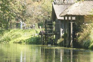 水に囲まれた小さな家の写真・画像素材[3171660]