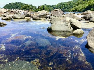 透明な海と海藻の写真・画像素材[3231932]