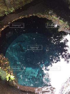湧き水の写真・画像素材[3103319]