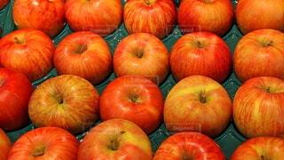りんごの写真・画像素材[4002107]
