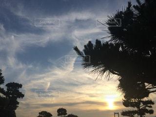 空の写真・画像素材[149069]