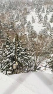建物の中から眺める雪山の写真・画像素材[3059700]