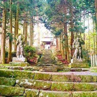 国東半島両子寺仁王門の写真・画像素材[3078893]