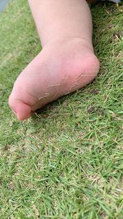 赤ちゃんの足の裏の写真・画像素材[3293819]