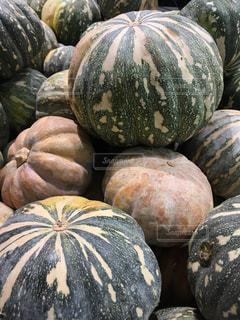 野菜の写真・画像素材[358357]
