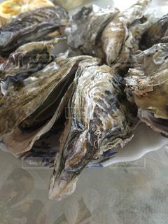 牡蠣のクローズアップの写真・画像素材[3114923]