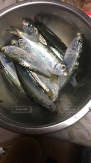 鍋の中の魚の写真・画像素材[3114921]