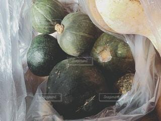南瓜の写真・画像素材[3739602]