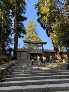 伊勢神宮の写真・画像素材[3058207]