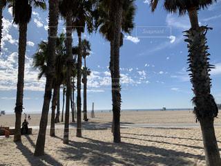 サンタモニカのビーチ3の写真・画像素材[3059464]