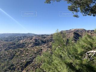 Hollywoodサインの見える丘の写真・画像素材[3059475]