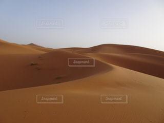 サハラ砂漠の写真・画像素材[3057338]
