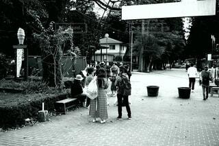 女子旅の写真・画像素材[3765581]