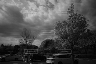 「桜と空」の写真・画像素材[4284455]