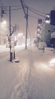 雪の写真・画像素材[227876]