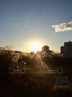 沈む夕日の写真・画像素材[230510]