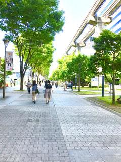 No.493476 風景