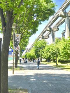 散歩 - No.518424