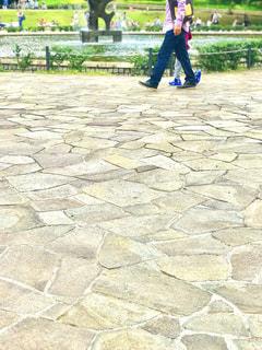休日、公園で散歩の写真・画像素材[793604]