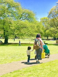 新緑の公園をお散歩の写真・画像素材[1108584]