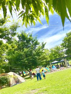 公園でバーベキューの写真・画像素材[1265264]