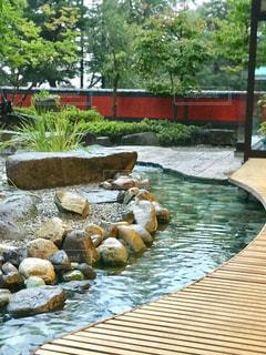 温泉旅館の庭園で足湯に浸かりながら。の写真・画像素材[1466317]