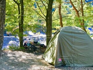 森の中のキャンプの写真・画像素材[1560404]