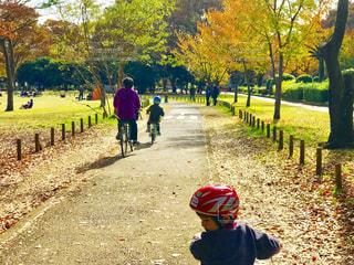 秋色の公園の樹々をを見ながらサイクリングの写真・画像素材[1646083]