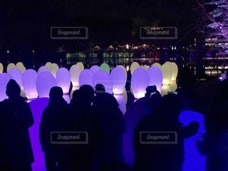 メッツァビレッジ チームラボ 森と湖の光の祭の写真・画像素材[1723875]