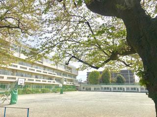 学校の学び舎と校庭の写真・画像素材[2047570]