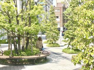 オフィスビル前のガーデンで休憩の写真・画像素材[2055801]