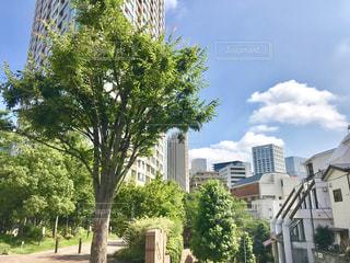 赤坂の街とタワーと空の写真・画像素材[2246885]
