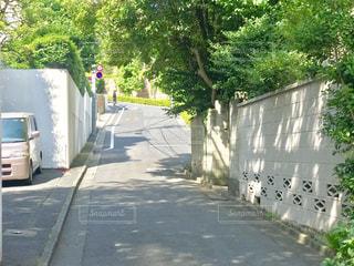 赤坂の坂道の写真・画像素材[2246886]