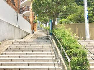 赤坂の階段の写真・画像素材[2258877]