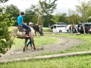 朝霧高原の道の駅で乗馬の体験会がやっていましたの写真・画像素材[2467419]