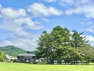 広い芝生と広い空の写真・画像素材[2618382]