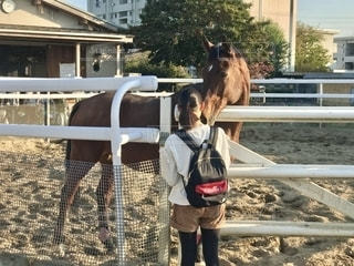 馬と触れ合ってきましたの写真・画像素材[2708008]