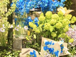 ホワイトデーに花を送ろう というキャンペーンみたい。素敵ですね。の写真・画像素材[3022276]