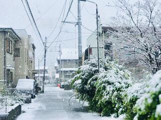 なごり雪でしょうかの写真・画像素材[3059768]