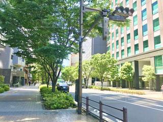 街の通りの眺めの写真・画像素材[3318205]