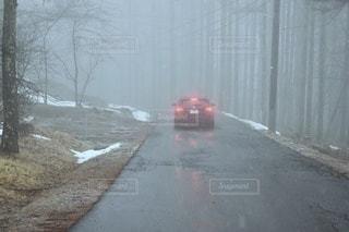 霧の中に浮かぶテールランプの写真・画像素材[3356277]