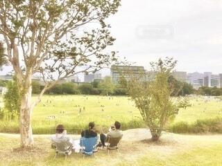 展望台から公園を眺めるの写真・画像素材[3797745]