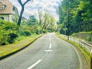 緑の多い道の写真・画像素材[4066045]